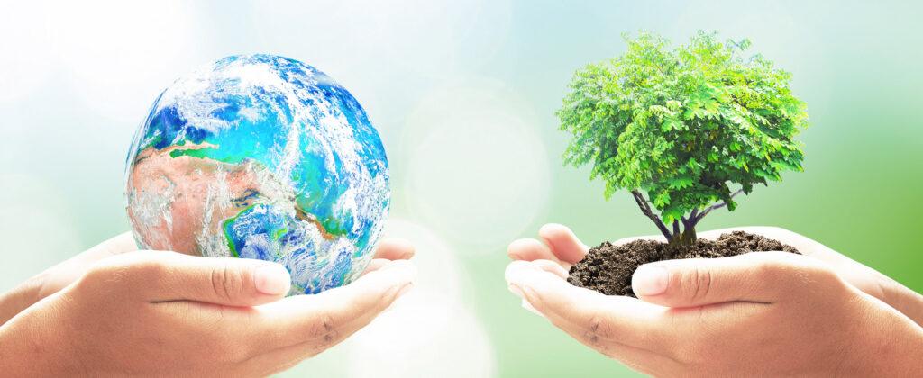 papier und mehr biooekonomie